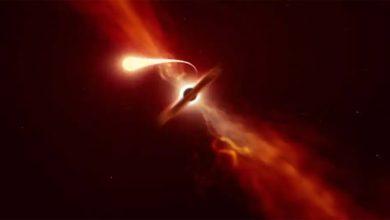 Photo of หลุมดำกลืนกินดาวขนาดเท่าดวงอาทิตย์นักดาราศาสตร์จับภาพช่วงเวลาที่แน่นอน: ชม |  เหตุการณ์ทางดาราศาสตร์ที่หายากอย่างยิ่ง: การระเบิดอย่างกะทันหันในดาวเช่นดวงอาทิตย์และจากนั้น …