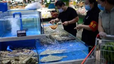 Photo of พบไวรัสโคโรนาที่ยังมีชีวิตอยู่ในอาหารแช่แข็งในจีน |  ไวรัสโคโรนามีชีวิตอยู่ในอาหารแช่แข็งในจีนกรมอนามัยแจ้งเตือน