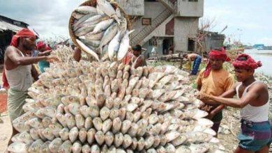 Photo of เนื่องจากการติดเชื้อโคโรนาศรีลังกาจึงปิดตลาดปลาและกำหนดเคอร์ฟิวในหลายพื้นที่ |  ความกลัวของโคโรนา: ประเทศนี้ปิดตลาดปลาโดยกำหนดเคอร์ฟิวในหลายพื้นที่