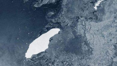 Photo of ภูเขาน้ำแข็ง A68a สามารถทำลายระบบนิเวศของมหาสมุทรแอตแลนติกใต้ที่เปราะบาง