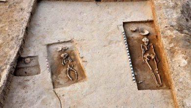 Photo of เผยสถานที่ฝังศพโบราณตัวเมียก็ล่าเช่นกัน