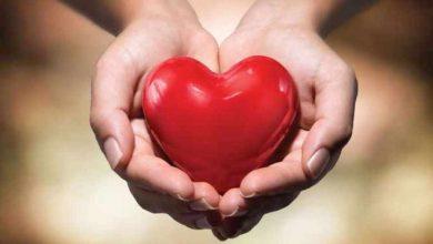 Photo of เคล็ดลับเหล่านี้จะช่วยให้หัวใจคุณแข็งแรง |  เคล็ดลับเหล่านี้จะช่วยให้หัวใจแข็งแรงเพียงแค่ต้องทำงานนี้