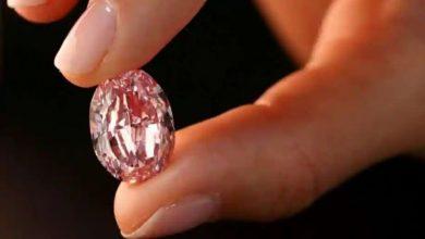 Photo of เพชรสีม่วง – ชมพูที่ใหญ่ที่สุดเท่าที่เคยประมูลมาได้เงิน 2.66 หมื่นล้านดอลลาร์ |  ขายในราคาเป็นประวัติการณ์เป็นเอกลักษณ์ในชื่อ 'Pink Heera', 'The Spirit of the Rose'