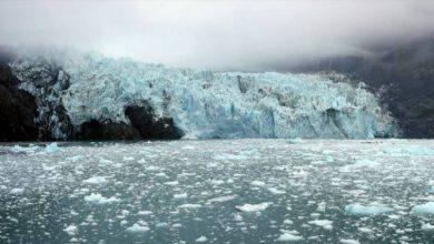 Photo of การถล่มในธารน้ำแข็งแบร์รี่อาร์มอาจทำให้เกิดสึนามิในอลาสก้าฟยอร์ด  ธารน้ำแข็งแห่งอลาสก้ากำลังละลายอย่างรวดเร็วหิมะถล่มจะเกิดขึ้นหากสึนามิร้ายแรง