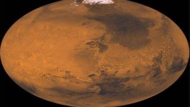 Photo of นักวิทยาศาสตร์ได้พัฒนาระบบที่สามารถผลิตออกซิเจนและเชื้อเพลิงบนดาวอังคารได้  ชีวิตบนดาวอังคาร: นักวิทยาศาสตร์ได้ยินข่าวดีตอนนี้ออกซิเจนและเชื้อเพลิงเป็นไปได้บนดาวอังคาร!