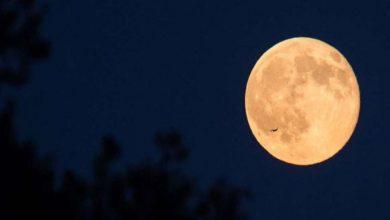 Photo of คืนพระจันทร์เย็นสุดท้ายของปีรู้เวลาและวันที่ในอินเดีย  วันนี้จะเป็นคืนพระจันทร์ที่หนาวเย็นสุดท้ายของปีโปรดทราบเวลาและวันที่ในอินเดีย