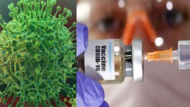 Photo of นักวิทยาศาสตร์สร้างไวรัส ditto Coronavirus ซึ่งจะหยุดโควิด -19 จริงและฆ่าเขา |  ข่าวดี: นักวิทยาศาสตร์คิดค้นอนุภาคเช่นถั่วจนถึงถั่วโคโรนาไวรัส  ใครจะหยุดและฆ่าโควิด -19