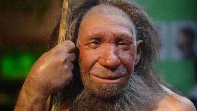 Photo of โครงกระดูกมนุษย์ยุคหิน 41 พันปีถูกกำหนดให้เปิดเผยเหตุผลเบื้องหลังการฝังศพในยุคหิน |  มนุษย์ยุคหิน 41 พันปีตั้งรกรากจากโครงกระดูกมนุษย์เพื่อฝังศพคนตาย