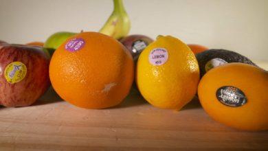 Photo of ความสำคัญของรหัสบนฉลากผลไม้ |  คุณมีสติกเกอร์บนผลไม้ของคุณหรือไม่?  รู้ความจริงของผลไม้ด้วยฉลาก