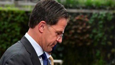 Photo of รัฐบาลเนเธอร์แลนด์ลาออกจากเหตุหลอกลวงเงินอุดหนุนเพื่อการดูแลเด็ก |  เนเธอร์แลนด์: นายกรัฐมนตรีหลอกลวง Mark Rutte ลาออกพร้อมกับรัฐมนตรีจะยังคงรับผิดชอบต่อไปจนกว่าจะมีการเลือกตั้ง