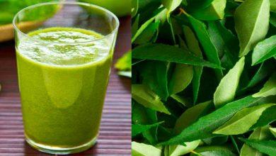 Photo of แกงใบชะพลู |  Curry Leaves: ดื่มน้ำใบนี้ในตอนเช้าคุณจะตกใจเมื่อรู้ประโยชน์!