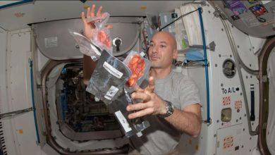 Photo of ความท้าทายด้านไอเดียการผลิตอาหารของ NASA ที่ Space $ 5 ล้านเพื่อเป็นรางวัลแก่ผู้ชนะ |  Deep Space Food Challenge: ความท้าทายของ NASA!  ให้แนวคิดใหม่ในการผลิตอาหารในอวกาศและรับ 5 ล้านดอลลาร์