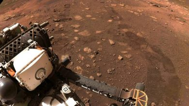 Photo of NASA Perseverance Rover Walk ความ Perseverance Rover ของ NASA ขึ้นไป 21 ฟุตบนดาวอังคาร Earth เป็นครั้งแรก |  NASA Perseverance Rover: Percussion Rover บนดาวอังคารเป็นครั้งแรกสูง 21 ฟุตซึ่งเป็นเครื่องหมายของล้อบนดินของดาวเคราะห์สีแดง
