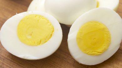 Photo of ประโยชน์ของไข่สำหรับร่างกายมนุษย์ระเบิดความคิดของคุณกระดูกตาข่าวสุขภาพหัวใจในภาษาฮินดี ngmp |  ถ้าคุณเริ่มกินไข่วันละ 3 ฟองแล้วรู้ไหมว่าจะเกิดอะไรขึ้น?  คุณจะประหลาดใจเมื่อเห็นผลกระทบ