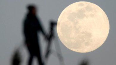 Photo of นักวิทยาศาสตร์ต้องการส่งสเปิร์มหลายล้านหยดไปยังดวงจันทร์รู้เหตุผลเบื้องหลัง |  สเปิร์มแบงค์!  นักวิทยาศาสตร์ต้องการส่งสเปิร์มและไข่ของสิ่งมีชีวิตนับล้านรวมทั้งมนุษย์ไปบนดวงจันทร์ความกลัวครั้งใหญ่นี้กำลังตามหลอกหลอน