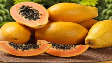 Photo of ประโยชน์ต่อสุขภาพของเมล็ดมะละกอรู้วิธีใช้ที่ถูกต้อง |  กินมะละกอแล้วทิ้งเมล็ดอย่าทำผิดคุณจะประหลาดใจกับประโยชน์ของมัน