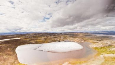 Photo of Project Iceworm หลุมลับก้นน้ำแข็งพบซากฟอสซิลพืชข่าววิทยาศาสตร์กรีนแลนด์ |  ซากดึกดำบรรพ์กรีนแลนด์โครงการ Iceworm: 'สมบัติ' อันมีค่าที่พบในหลุมลับใต้น้ำแข็งในกรีนแลนด์นักวิทยาศาสตร์กังวลเกี่ยวกับความหายนะ