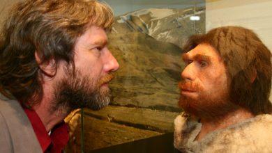 Photo of นักวิทยาศาสตร์การสูญพันธุ์ยุคนีแอนเดอร์ทัลค้นพบว่ามนุษย์ยุคหินสูญพันธุ์ไปอย่างไรเมื่อใกล้กับการทำลายล้าง |  การสูญพันธุ์ของมนุษย์ยุคหิน: นักวิทยาศาสตร์ประสบความสำเร็จครั้งใหญ่!  เรียนรู้ว่ามนุษย์สูญพันธุ์ไปอย่างไรโลกใกล้จะเกิดประวัติศาสตร์การทำลายล้างซ้ำแล้วซ้ำเล่า