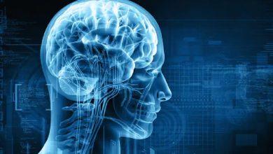 Photo of นิสัยทำลายสมองรู้วิธีช่วยตัวเอง ngmp |  นิสัยเหล่านี้ก่อให้เกิดอันตรายอย่างมากต่อสมองของคุณจงรู้วิธีป้องกัน