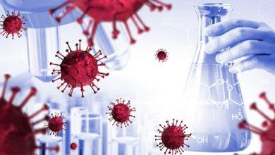 Photo of คำถามเกี่ยวกับ Coronavirus คำตอบที่คุณควรรู้