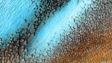 Photo of Blue Dunes บนดาวอังคาร NASA แบ่งปันภาพเนินทรายสีน้ำเงินของดาวอังคารที่สวยงามมาก |  บลูดูนส์บนดาวอังคาร: NASA แบ่งปันภาพเนินทรายสีน้ำเงินของดาวอังคารที่สวยงามมากแล้วเจอกัน