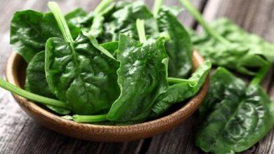 Photo of เคล็ดลับสุขภาพเริ่มกินผักโขม Palak ke fhayde และรับ 10 ประโยชน์ที่น่าอัศจรรย์ของ smup |  เคล็ดลับสุขภาพ: เพียงแค่เริ่มบริโภคผักโขมประโยชน์มากมายจะทำให้คุณประหลาดใจ!