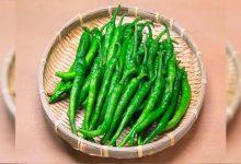 Photo of ประโยชน์ต่อสุขภาพของการกินพริกเขียว |  ประโยชน์ของพริกเขียว: พริกเขียวอาจมีรสเผ็ดในอาหาร แต่มีประโยชน์ดีต่อสุขภาพ