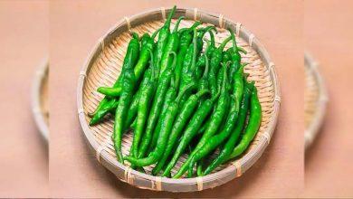 Photo of ประโยชน์ต่อสุขภาพของการกินพริกเขียว    ประโยชน์ของพริกเขียว: พริกเขียวอาจมีรสเผ็ดในอาหาร แต่มีประโยชน์ดีต่อสุขภาพ