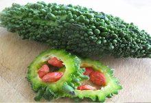 Photo of ประโยชน์ต่อสุขภาพของรากใบและเมล็ดพืชที่ขมขื่น KARELE KE FAYDE UPNS |  ไม่เพียงแค่มะระเท่านั้นเมล็ดรากและใบยังมหัศจรรย์ต่อสุขภาพด้วยใช้วิธีนี้