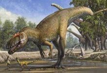 Photo of เมื่อหลายล้านปีก่อนไดโนเสาร์ที่ยิ่งใหญ่สูญพันธุ์ไปอย่างไรข่าวล่าสุด |  นักวิทยาศาสตร์เปิดเผยครั้งใหญ่!  เมื่อหลายล้านปีก่อนไดโนเสาร์ที่ยิ่งใหญ่ได้สิ้นสุดลงบนโลก