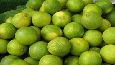 Photo of การบริโภค mausambi ในช่วงฤดูร้อนเป็น mpap น้ำมะนาวหวานที่มีประโยชน์มาก |  หากคุณต้องการให้ร่างกายแข็งแรงในช่วงฤดูร้อนให้บริโภคโมซัมบิด้วยวิธีนี้คุณจะได้รับประโยชน์ที่น่าอัศจรรย์