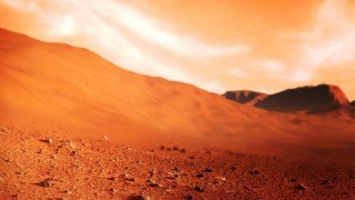 Photo of สิ่งมีชีวิตบนดาวอังคารชีวิตต้องเป็นเช่นนี้บนดาวอังคารโบราณและแม่น้ำและทะเลสาบไหลแบบนี้ |  Life On Mars: เพิ่มโอกาสในการตั้งถิ่นฐานบนดาวอังคาร!  นักวิทยาศาสตร์ได้เปิดเผยข้อมูลครั้งใหญ่โดยบอกว่าแม่น้ำทะเลสาบและสิ่งมีชีวิตอยู่บนดาวอังคารได้อย่างไร