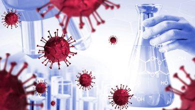 Photo of การจัดลำดับจีโนม 10 แสนล้านใน 172 ประเทศเพื่อรับทราบเกี่ยวกับสายพันธุ์ใหม่ของ coronavirus ข่าวล่าสุด  มีการจัดลำดับจีโนมมากกว่า 1 ล้านครั้งใน 172 ประเทศในการต่อสู้กับโคโรนาไวรัสรู้เหตุผล