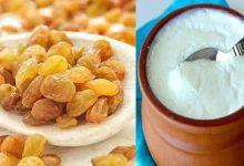 Photo of นมเปรี้ยวและลูกเกดกับน้ำผึ้งเคล็ดลับที่น่าอัศจรรย์เพื่อสุขภาพ kishmish dahi ประโยชน์สำหรับ pcup ไลฟ์สไตล์สุขภาพ |  ประโยชน์ของ Dahi-Kishmis: หากคุณต้องการที่จะฟิตอยู่แล้วผสมนมเปรี้ยวในนมเปรี้ยวเพียงอย่างเดียวก็จะทำให้คุณประหลาดใจ