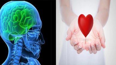 Photo of สุขภาพถ้าคุณต้องการให้หัวใจและความคิดของคุณแข็งแรงกว่าเลิกนิสัยเหล่านี้อาหารเพื่อสุขภาพ pcup    หากคุณต้องการความคิดและจิตใจละเว้น 5 สิ่งนี้โดยเร็วสุขภาพจะร่ำรวย