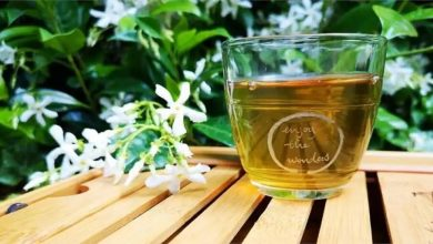 Photo of International Tea Day 2021 สูตรชาสมุนไพรมหัศจรรย์และประโยชน์ต่อปอดและทางเดินหายใจ |  กิน 'ชาวิเศษ' ในวันน้ำชาสากลปอดจะได้ห่างไกลจากการติดเชื้อ