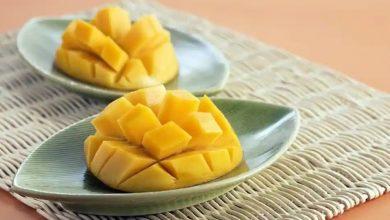 Photo of ประโยชน์ของราชาผลไม้มะม่วง aam ke fayde |  ประโยชน์ของมะม่วง: ราคาของเมล็ดมะม่วงก็ดีขึ้นด้วย