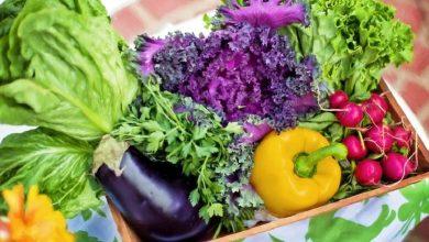 Photo of Immunity Booster Foods สำหรับเด็ก อาหารเหล่านี้จะช่วยป้องกันคลื่นลูกที่สามของ Corona brmp    ข่าวสุขภาพ: ปกป้องเด็กจากโคโรนาคลื่นลูกที่สาม เสริมสร้างภูมิคุ้มกันให้แข็งแรง