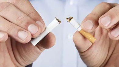 Photo of ร่างกายของคุณได้รับผลประโยชน์ใหม่ทุกนาทีรู้วันงดสูบบุหรี่โลก 2021 |  วันงดสูบบุหรี่โลก 2021: ทุกช่วงเวลาที่ร่างกายของคุณได้รับประโยชน์ใหม่หลังจากเลิกสูบบุหรี่