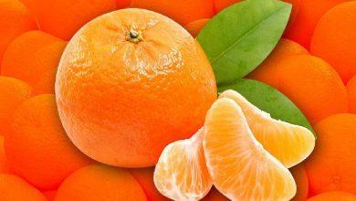 Photo of ประโยชน์ต่อสุขภาพของตัวกระตุ้นภูมิคุ้มกัน สีส้ม santra khane ke ปฏิสัมพันธ์ brmp |  อาหารเสริมภูมิคุ้มกันสีส้ม: ใบหน้าจะเรืองแสงและน้ำหนักก็จะอยู่ภายใต้การควบคุมรู้จากผู้เชี่ยวชาญถึงประโยชน์อันน่าอัศจรรย์ของส้ม