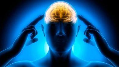 Photo of Five Foods For Sharp Brain And Memory Dimag หรือ yaddast badhane ke tatrika yaddast kese badhaye brmp |  กินอะไรดี สมองแจ่มใส ความจำดี?  ผู้เชี่ยวชาญบอก 5 สิ่งนี้ได้ผล