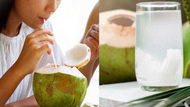 Photo of น้ำมะพร้าว ประโยชน์ janiye ประโยชน์ของน้ำมะพร้าวสำหรับเด็ก brmp |  น้ำมะพร้าวมีประโยชน์มากมายทั้งเด็กและผู้ใหญ่ ผู้เชี่ยวชาญบอกเวลาที่เหมาะสมในการบริโภค รู้ถึงประโยชน์