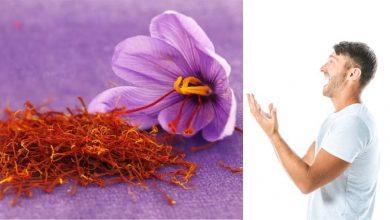 Photo of หยิกหญ้าฝรั่นมีประโยชน์มากสำหรับผู้หญิงและผู้ชาย สุขภาพทางเพศ zafran หรือ kesar ประโยชน์ในภาษาฮินดี |  'ความได้เปรียบของจาฟฟราน' สักเล็กน้อย คุณรู้อะไรไหม ราเมซ บาบู เป็นยาวิเศษสำหรับผู้ชาย