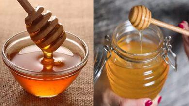 Photo of อย่ากินน้ำผึ้งด้วยสิ่งเหล่านี้ honey ke sath kya khana chahiye kya nahi brmp |  ข่าวสุขภาพ น้ำผึ้งกลายเป็นยาพิษด้วยสิ่งเหล่านี้ อย่าลืมทาน,