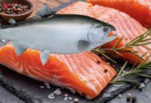 Photo of ประโยชน์ของปลาแซลมอน รู้ที่นี่ ประโยชน์ของปลาทะเล ปลาแซลมอน ปลาแซลมอน machli ke ปฏิสัมพันธ์ brmp |  กินปลานี้แล้วได้ประโยชน์มหาศาล เสี่ยงโรคเหล่านี้ ทั้งมะเร็ง หัวใจ จะน้อยลง ร่างกายก็จะแข็งแรง