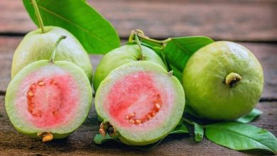 Photo of ประโยชน์ของฝรั่งเพื่อสุขภาพ Amrood khane ke ปฏิสัมพันธ์ในภาษาฮินดี brmp |  ประโยชน์ของฝรั่ง : กินฝรั่งเพิ่มพละกำลัง มีประโยชน์มากในโรคเหล่านี้ รู้ 5 ประโยชน์มหาศาล