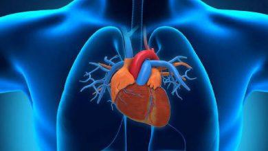 Photo of เครื่องดื่มเพื่อสุขภาพหัวใจ เครื่องดื่มเหล่านี้มีประโยชน์อย่างมากสำหรับอาการหัวใจวาย |  เครื่องดื่มบำรุงหัวใจ : เครื่องดื่มเหล่านี้จะช่วยให้หัวใจแข็งแรง โรคภัยจะไม่มาใกล้ตัว