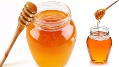 Photo of ประโยชน์ของน้ำผึ้งในมรสุม janiye sahad ke ปฏิสัมพันธ์ brmp |  ประโยชน์ของน้ำผึ้งในฤดูมรสุม : ในฤดูฝน บริโภคน้ำผึ้งในเวลานี้ คุณจะได้ประโยชน์มหาศาลถึง 10 ประการ