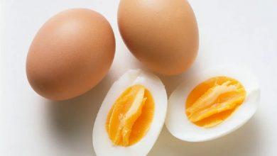 Photo of ประโยชน์ของการกินไข่ต้มในอาหารเช้า naste me kya khana chahiye naste me anda khane ke ปฏิสัมพันธ์ janiye brmp    ไข่ต้มวันละฟอง ดีต่อสุขภาพมาก ได้ประโยชน์มหาศาล แค่รู้เวลาที่เหมาะสมในการบริโภค