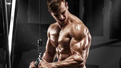 Photo of แบบฝึกหัดที่ดีที่สุดสำหรับ Triceps Muscles รู้วิธีการทำ triceps Workout brmp |  เหล่านี้คือแบบฝึกหัดห้าข้อซึ่งจะช่วยให้กล้ามเนื้อไขว้ของคุณดูดีและรู้วิธีทำ